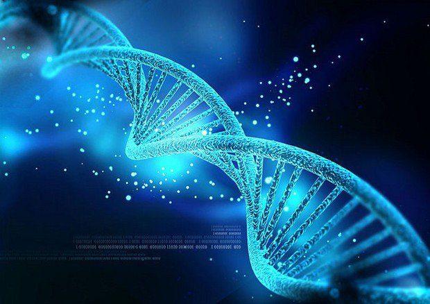 CARO DNA: giovani scienziati a caccia dell'acido desossiribonucleico